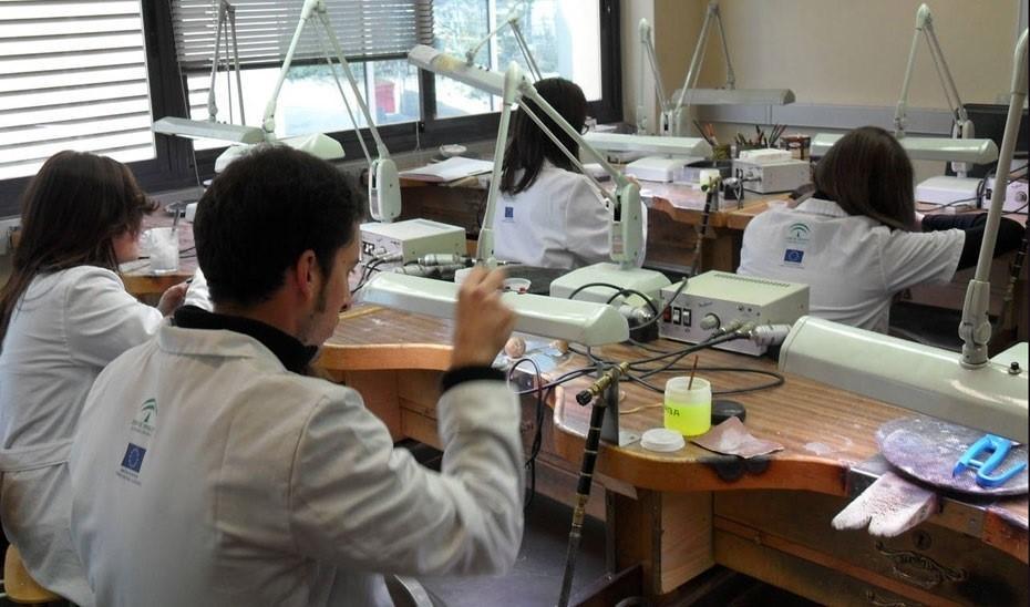 Formación Profesional: garantía de inserción laboral en Sevilla