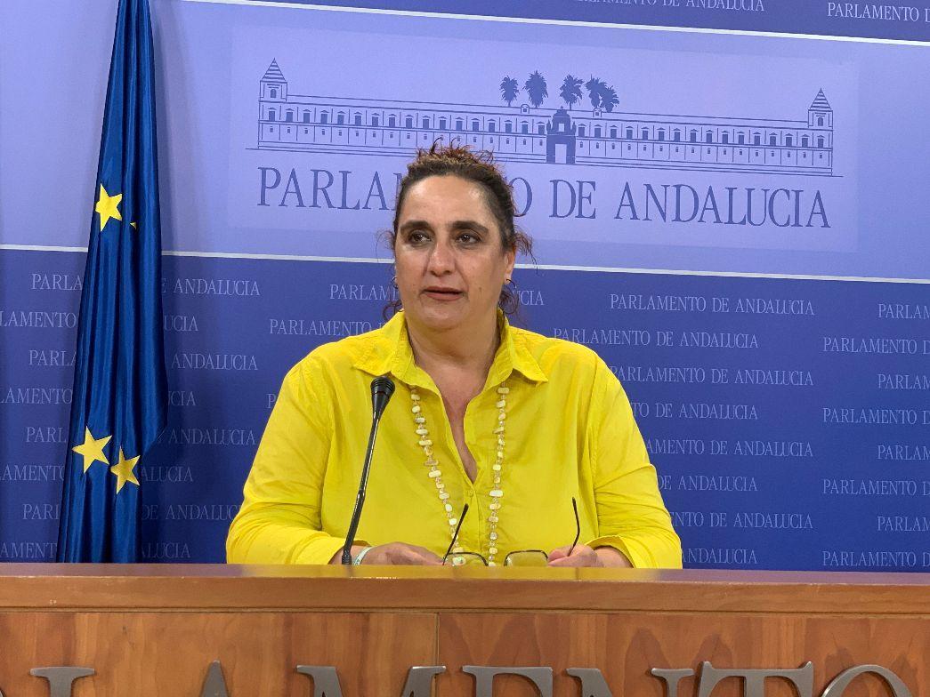 Adelante pide un posicionamiento a la Junta con la planta de gas licuado de Los Barrios