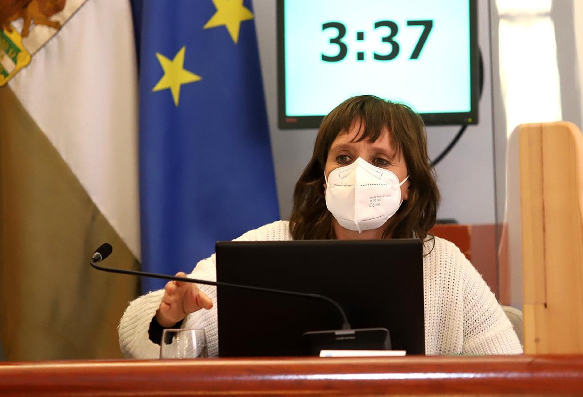 """Álvarez califica de """"ruin"""" el rechazo de la oposición a las modificaciones presupuestarias"""