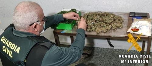 Marihuana intervenida. Europa Press