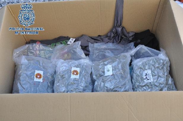 Interceptan en Vélez-Málaga una furgoneta de mudanza con 24 kilos de cogollos de marihuana