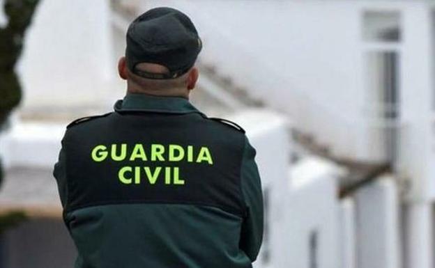 Interceptados con 9 toneladas de aceituna robada y documentación falsa