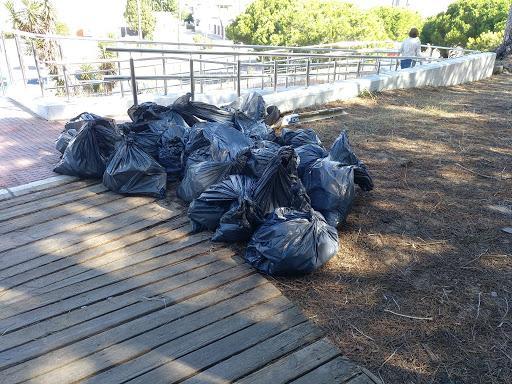 Los jóvenes de IU organizan una recogida de residuos en los pinares de Rota