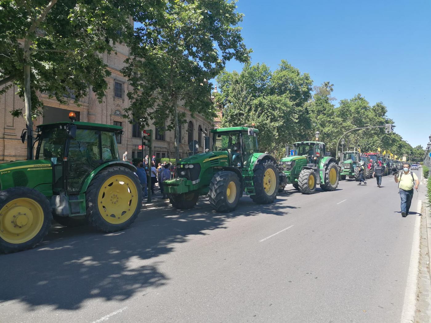 """El Bajo Guadalquivir reclama con una tractorada un reparto de agua """"lineal"""""""