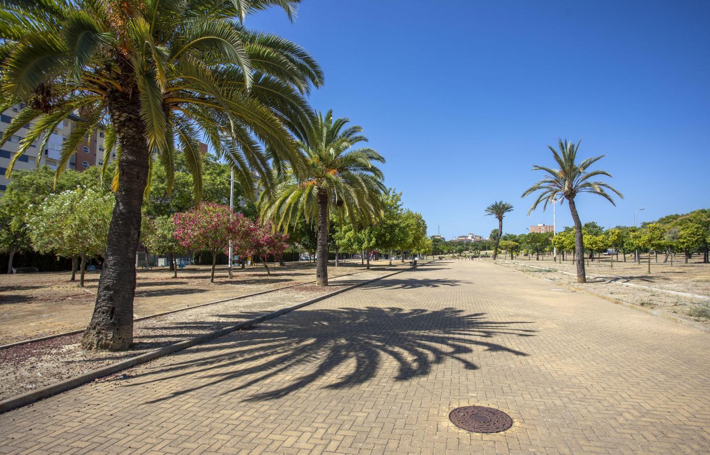 Compromiso de la Fundación Cepsa en Huelva capital con el medio ambiente