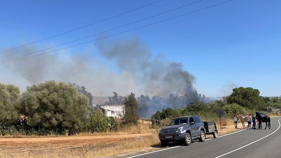Estabilizado el incendio forestal declarado en un paraje de Niebla