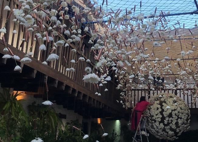 Flora y los Patios desbordan a la ciudad de visitantes y turistas